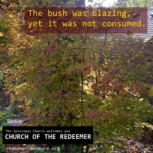 The bush was blazing, yet it was not consumed.