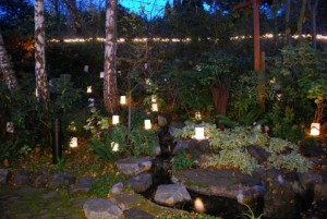 Memorial Garden with the luminaria at the 2013 All Souls' observance