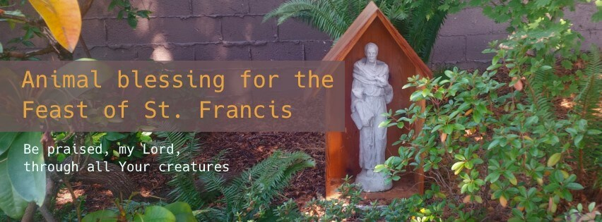 Animal blessing for the Feast of St. Francis
