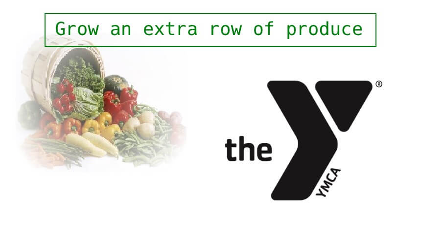 Northshore YMCA Summer Vegetable Distribution
