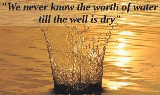 We never know the value of water till the well is dry.