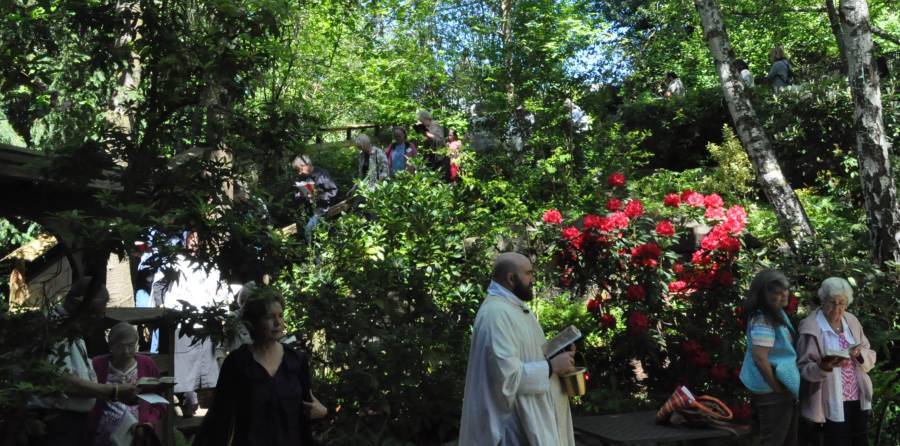 Rogation Sunday 2016