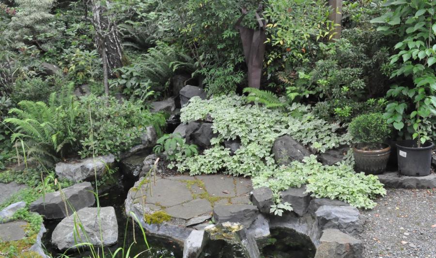 The Memorial Garden in summer green
