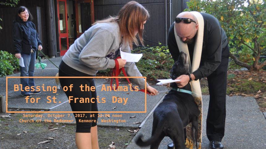 St. Francis Animal Blessing 2017